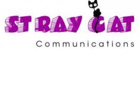 Stray Cat wins prestigious United Business Media events